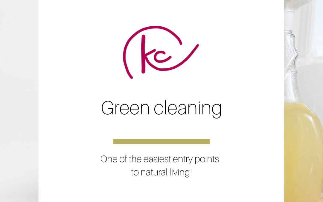 Green cleaning make and take